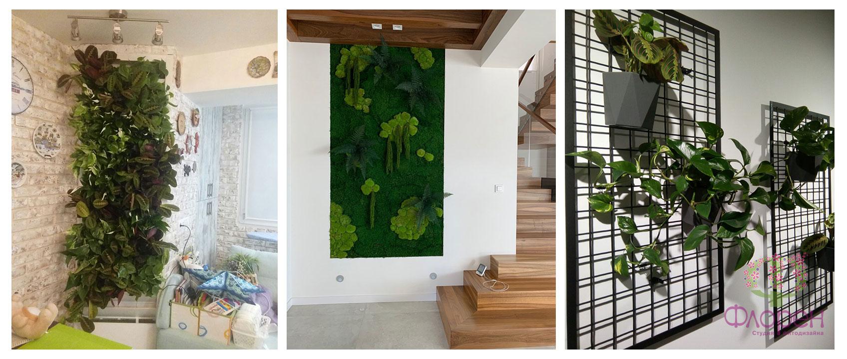Особенности вертикального озеленения офиса. Фото 2