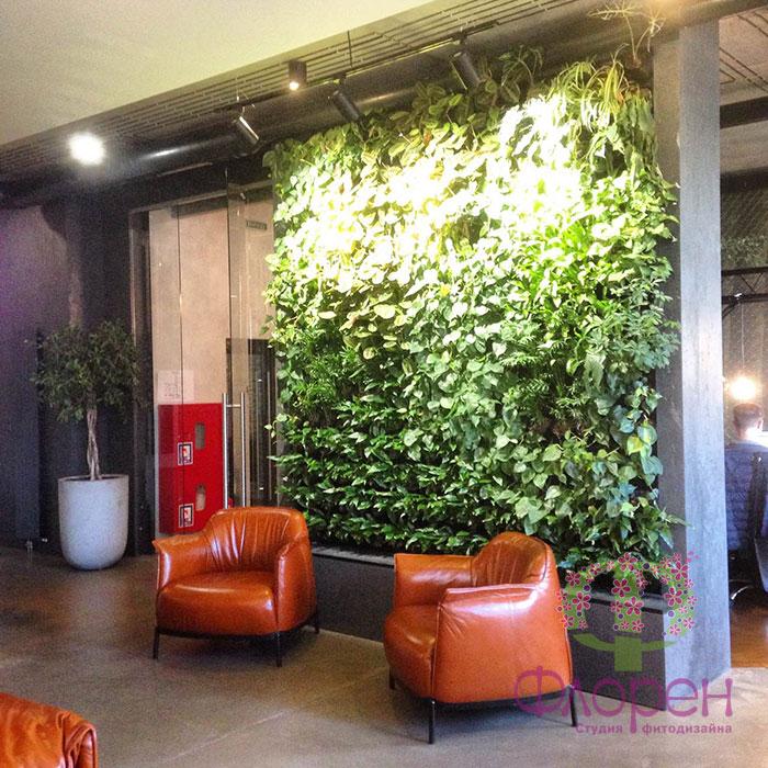 Варианты вертикального озеленения офиса. Фото 4