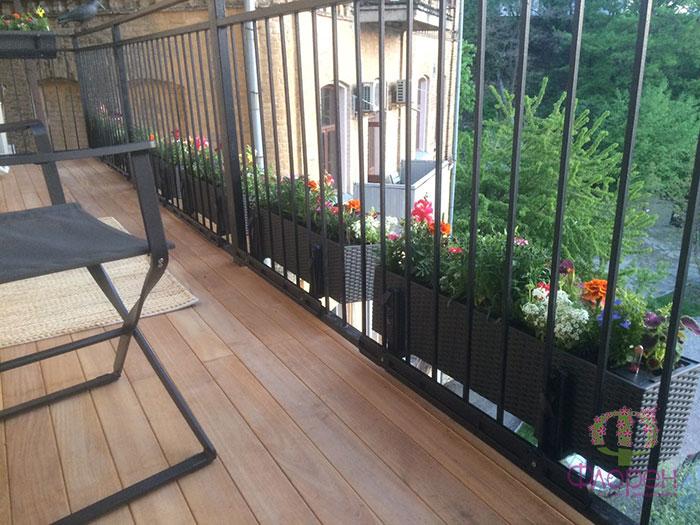 Выбор растений в зависимости от условий. Фото 6