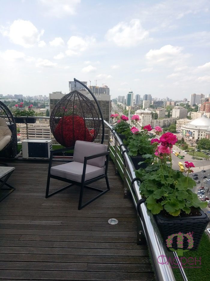Расположение и сочетание растений на балконе. Фото 8
